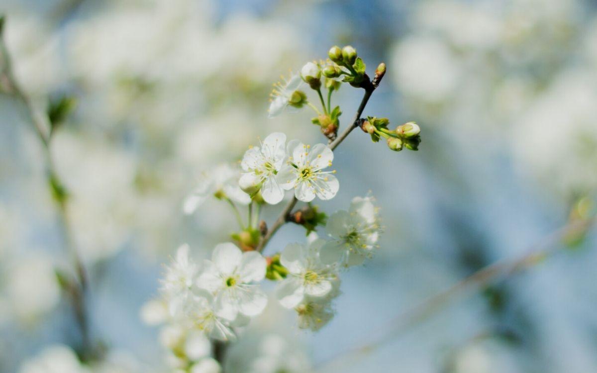 God en goedheid in de natuur - Hans Leewens - OMG Magazine